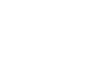 MTV High School Logo